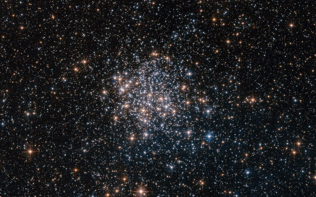 This NASA/ESA Hubble Space Telescope image shows the globular cluster NGC 1854, a gathering of white and blue stars in the southern constellation of Dorado (The Dolphinfish). NGC 1854 is located about 135 000 light-years away, in the Large Magellanic Cloud (LMC), one of our closest cosmic neighbours and a satellite galaxy of the Milky Way. The LMC is a hotbed of vigorous star formation. Rich in interstellar gas and dust, the galaxy is home to approximately 60 globular clusters and 700 open clusters. These clusters are frequently the subject of astronomical research, as the Large Magellanic Cloud and its little sister, the Small Magellanic Cloud, are the only systems known to contain clusters at all stages of evolution. Hubble is often used to study these clusters as its extremely high-resolution cameras can resolve individual stars, even at the clusters' crowded cores, revealing their mass, size and degree of evolution.